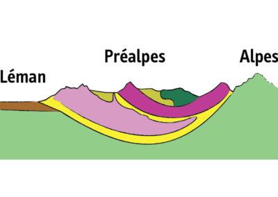 Coupe géologique simplifiée.