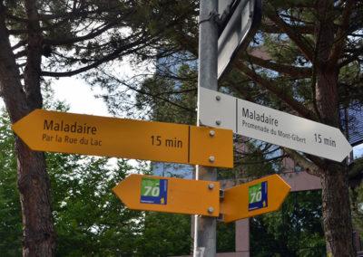 La Promenade du Mont-Gibert: une alternative bucolique