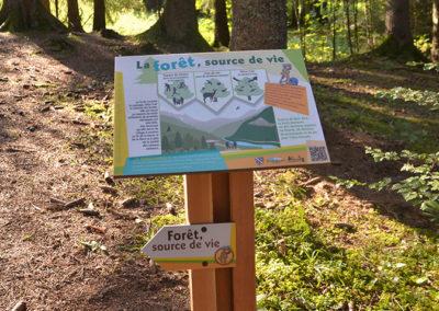 Sentier Forêt source de vie