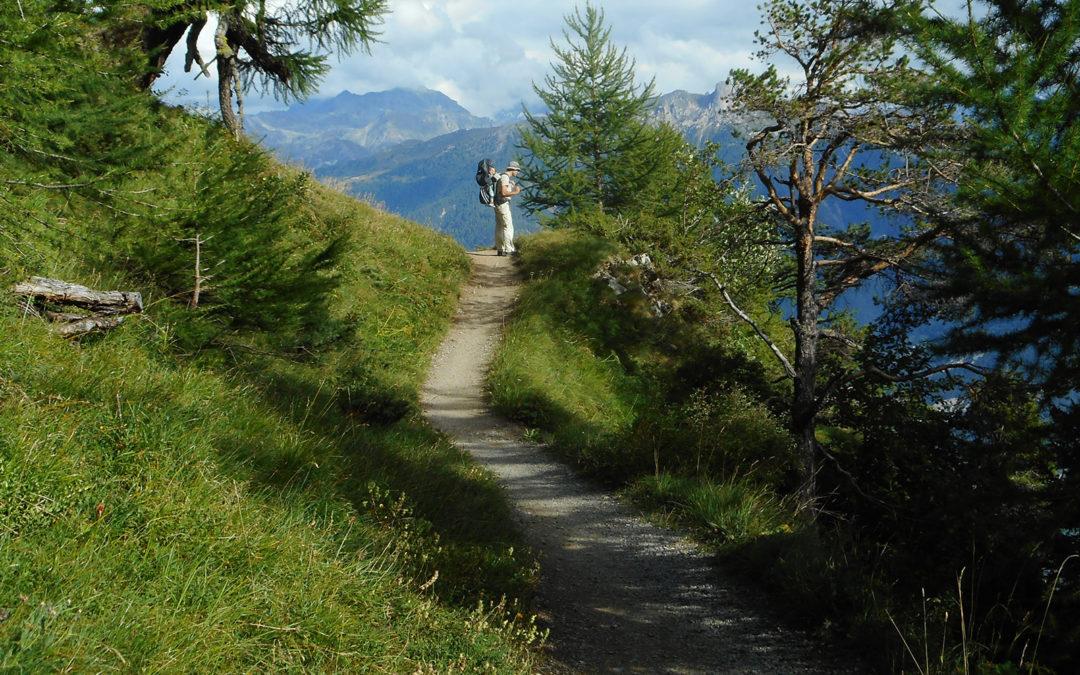 Evaluation des sentiers didactiques du Valais